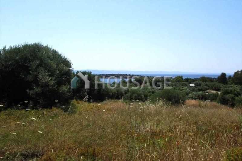 Земля в Ситонии, Греция, 7125 м2 - фото 1