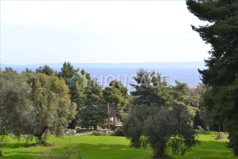 Земля на Кассандре, Греция, 13000 м2 - фото 1