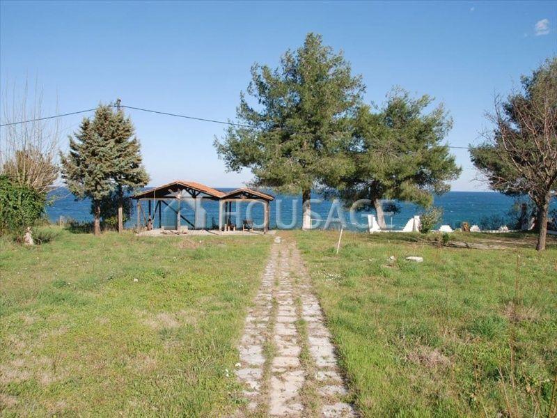 Земля Катерини, Греция, 4586 м2 - фото 1