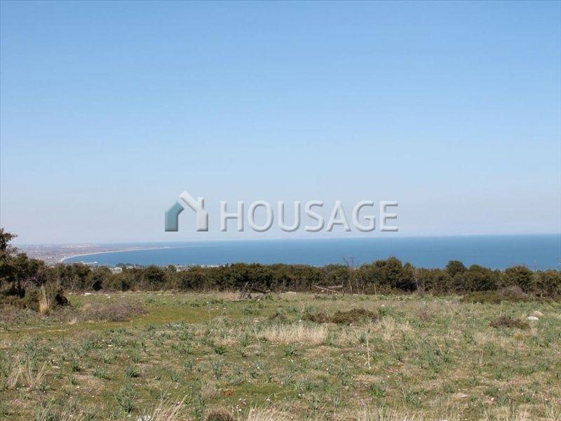 Земля Катерини, Греция, 21919 м2 - фото 1