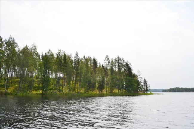 Земля в Миккели, Финляндия, 7980 м2 - фото 1