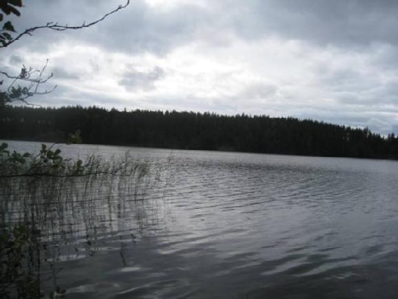 Земля в Миккели, Финляндия, 4125 м2 - фото 2
