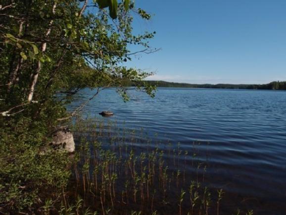 Земля в Пуумала, Финляндия, 6800 м2 - фото 1
