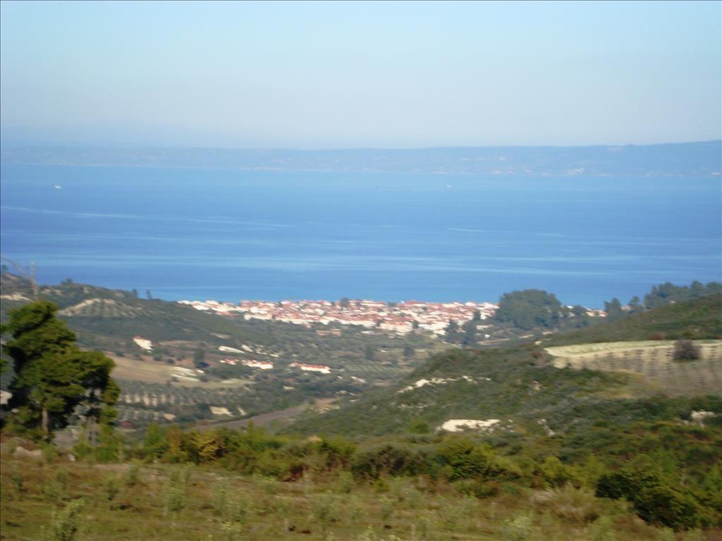 Земля на Кассандре, Греция, 4000 м2 - фото 1