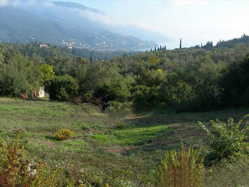 Земля на Керкире, Греция, 1600 м2 - фото 1