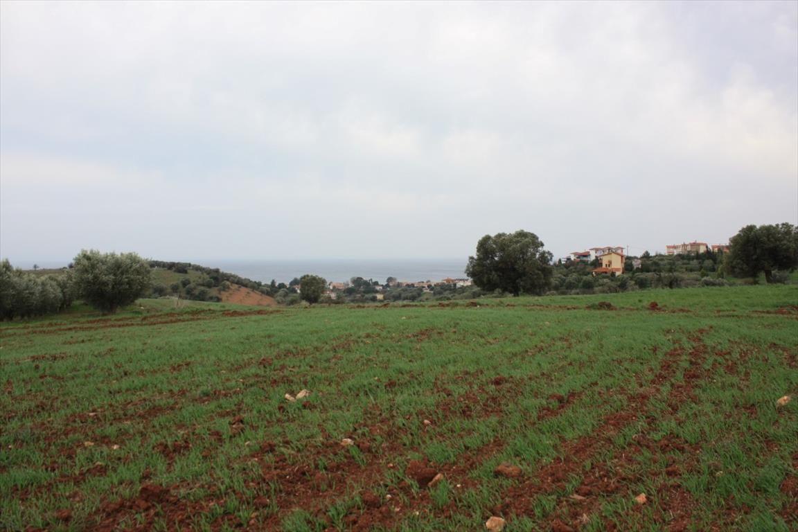 Земля в Ситонии, Греция, 3430 м2 - фото 1