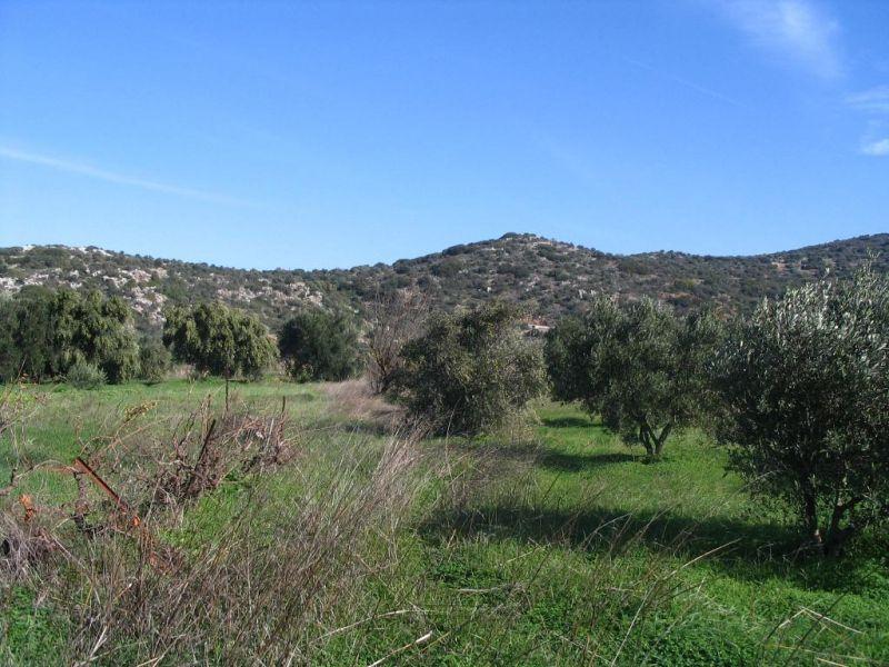 Земля в Айос-Николаос, Греция, 334 м2 - фото 1
