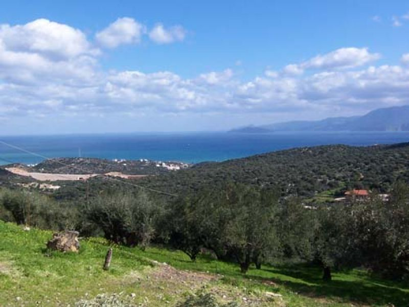 Земля в Айос-Николаос, Греция, 184 м2 - фото 1