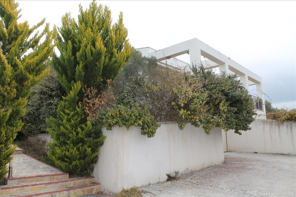 Вилла на Кассандре, Греция, 8970 м2 - фото 1