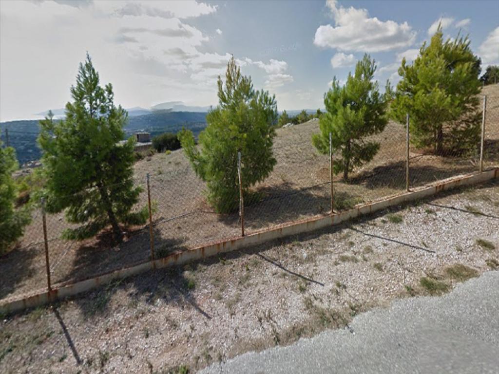 Земля в Неа Макри, Греция, 1200 м2 - фото 1