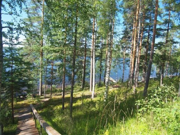 Таунхаус в Руоколахти, Финляндия, 30 м2 - фото 4