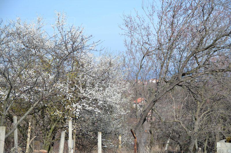 Земля в Святых Константине и Елене, Болгария, 1 м2 - фото 1