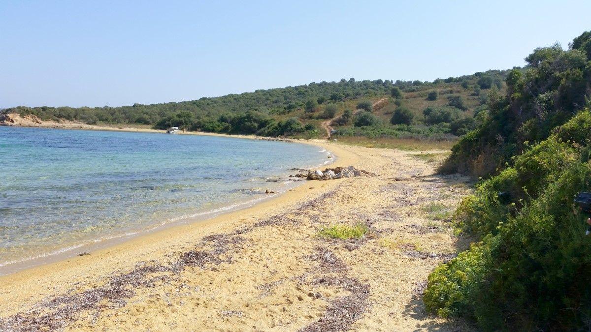 Земля на Афоне, Греция, 12000 м2 - фото 1