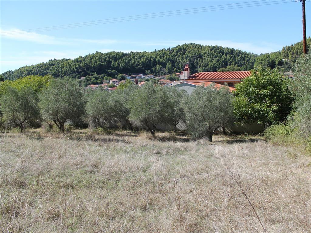 Земля в номе Ханья, Греция, 1025 м2 - фото 1