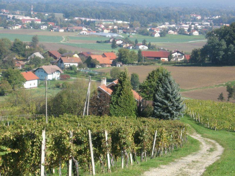 Дом Раденци, Словения, 728 м2 - фото 1