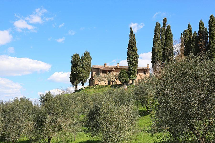 Коттедж в Сиене, Италия, 9395 м2 - фото 1