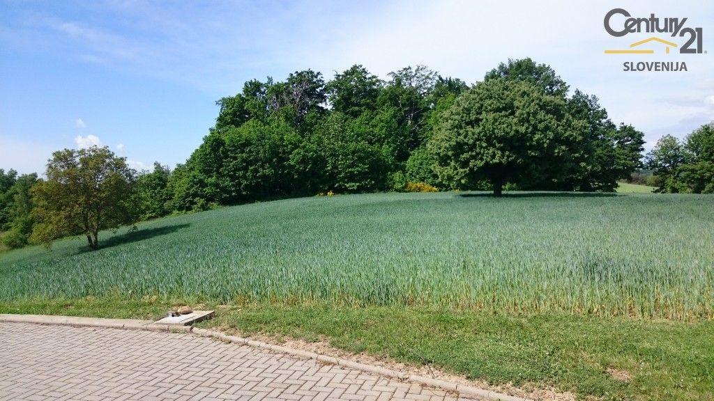Ферма в Моравске-Топлице, Словения, 14084 м2 - фото 2