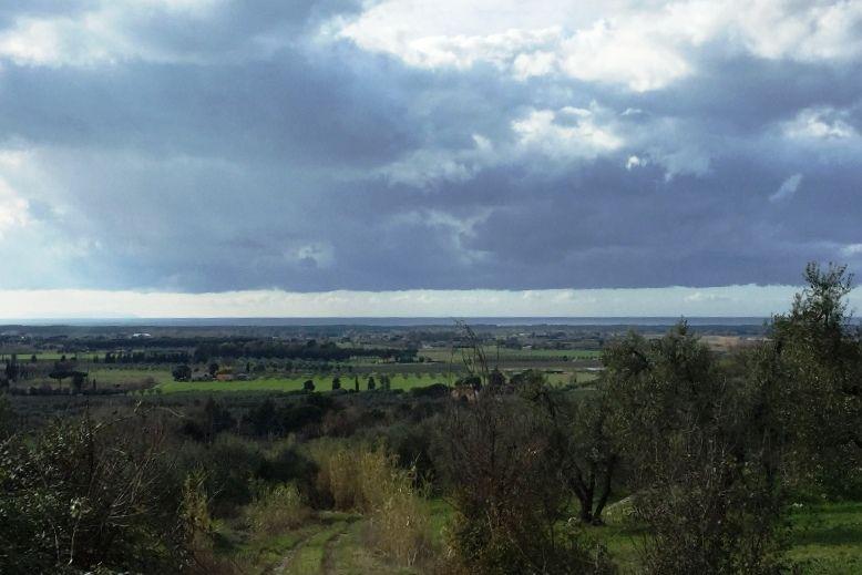 Земля в Ливорно, Италия, 13310 м2 - фото 1