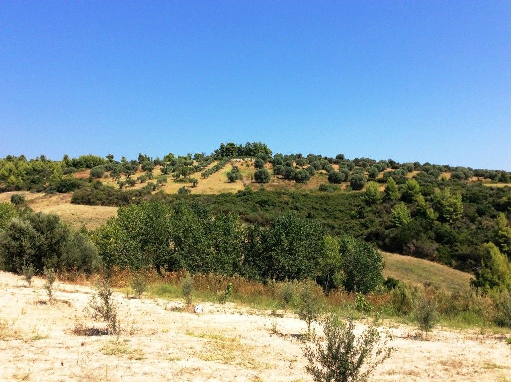 Земля Халкидики-Кассандра, Греция, 4000 сот. - фото 1