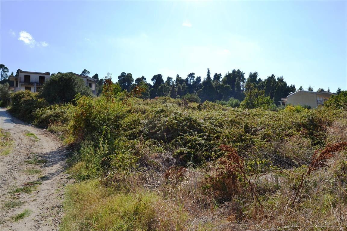 Земля Халкидики-Кассандра, Греция, 378 сот. - фото 1