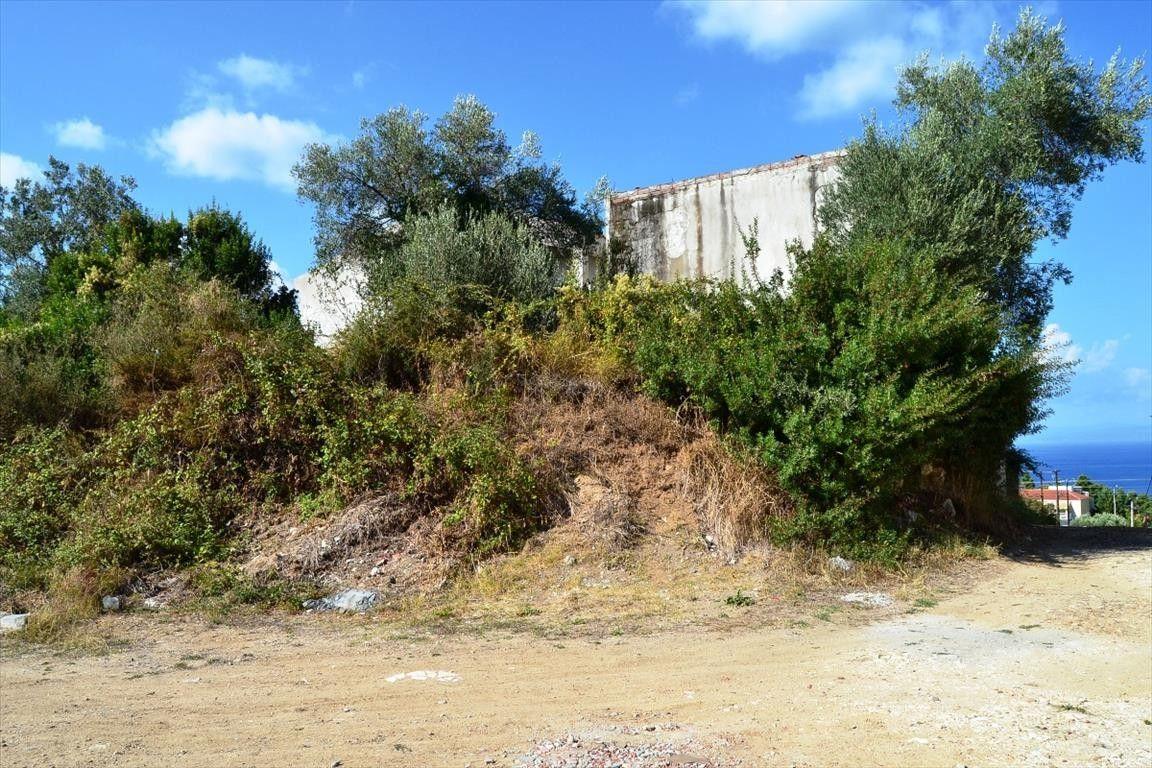 Земля Халкидики-Кассандра, Греция, 376 сот. - фото 1