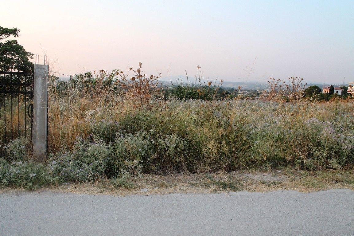 Земля Халкидики-Другое, Греция, 401 сот. - фото 1