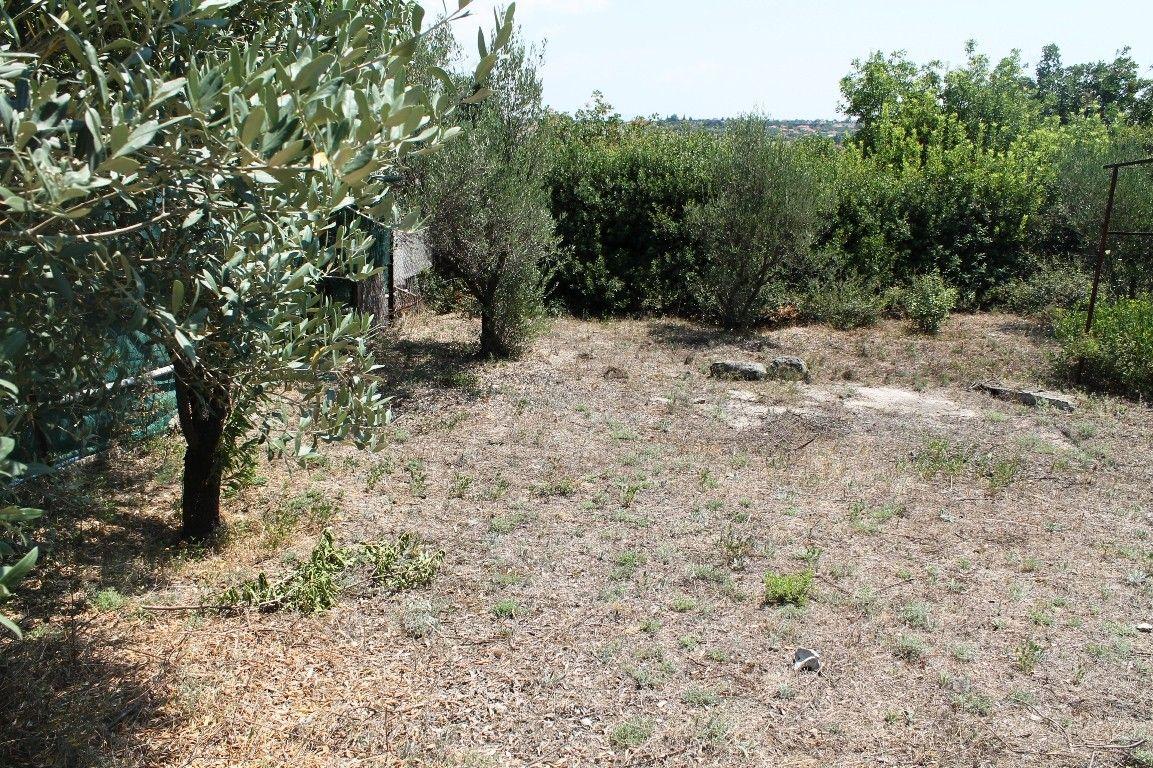 Земля Халкидики-Другое, Греция, 233 сот. - фото 1