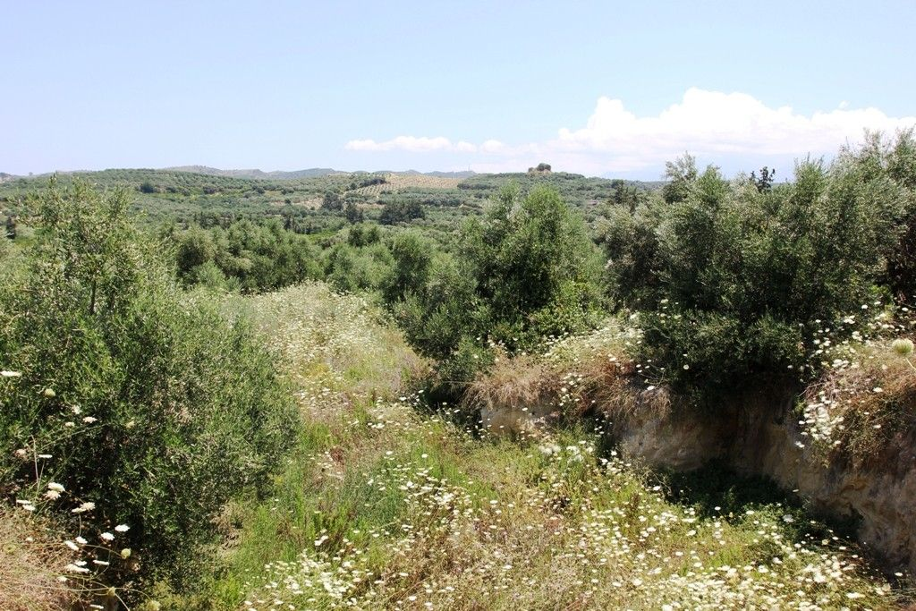 Коттедж о. Крит, Греция, 2480 сот. - фото 1