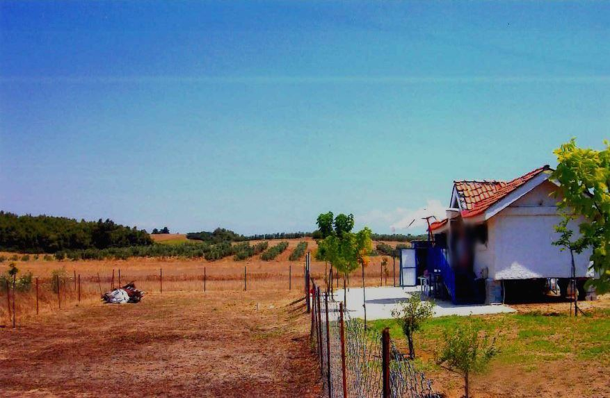 Земля Халкидики-Кассандра, Греция, 500 сот. - фото 1