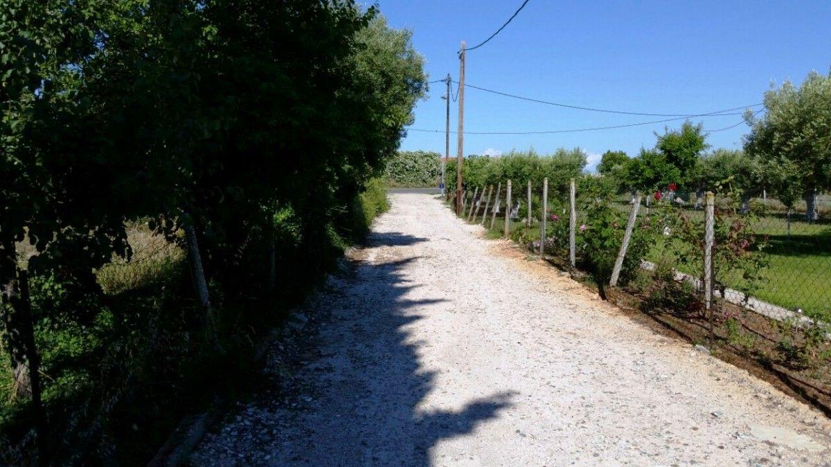 Земля Халкидики-Кассандра, Греция, 600 сот. - фото 1