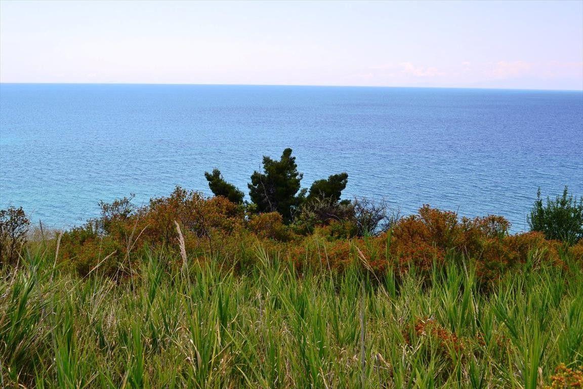 Земля Халкидики-Кассандра, Греция, 27000 сот. - фото 1