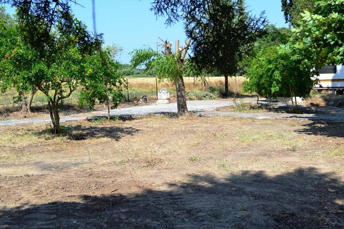 Земля Халкидики-Кассандра, Греция, 800 сот. - фото 1
