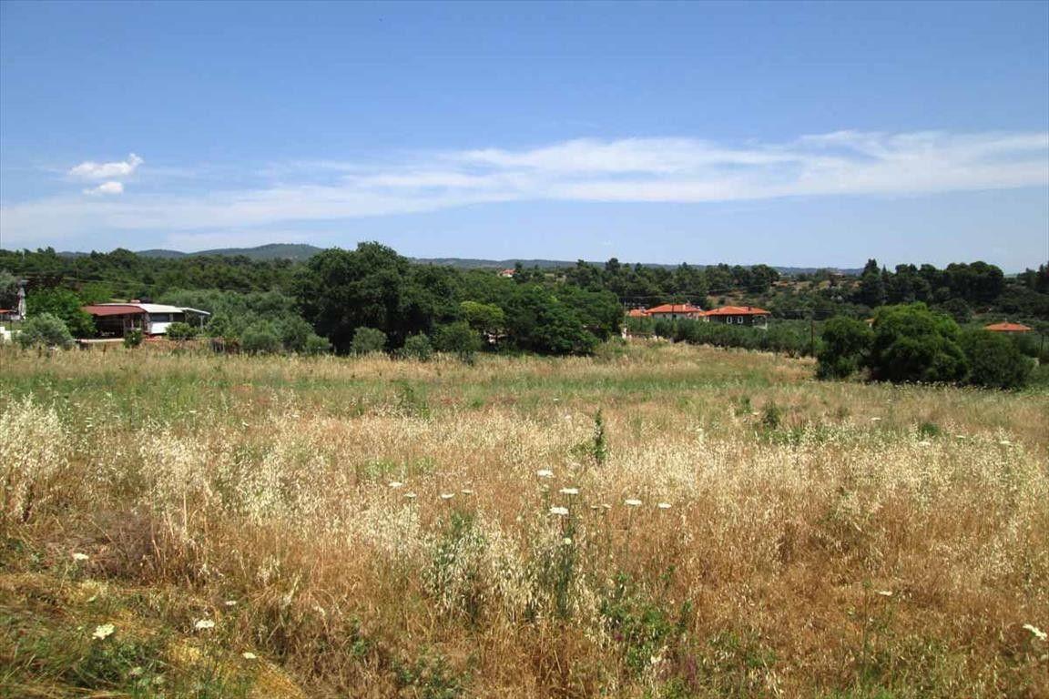 Земля Халкидики-Ситония, Греция, 1500 сот. - фото 1