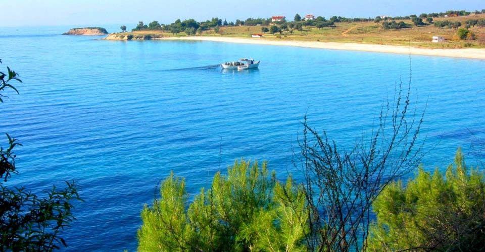 Земля Халкидики-Другое, Греция, 12750 сот. - фото 1