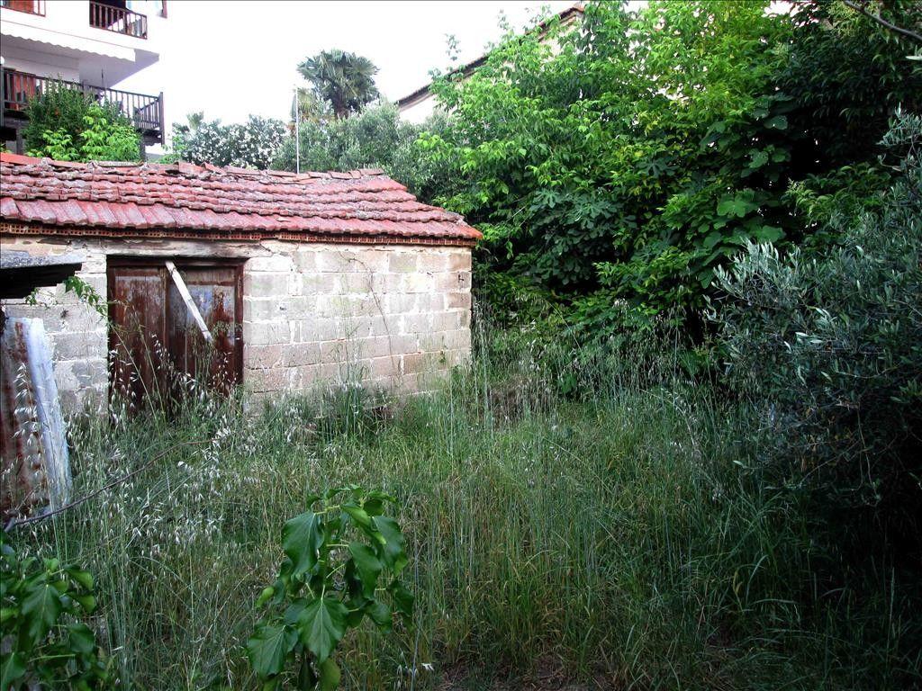 Земля Халкидики-Ситония, Греция, 218 сот. - фото 1