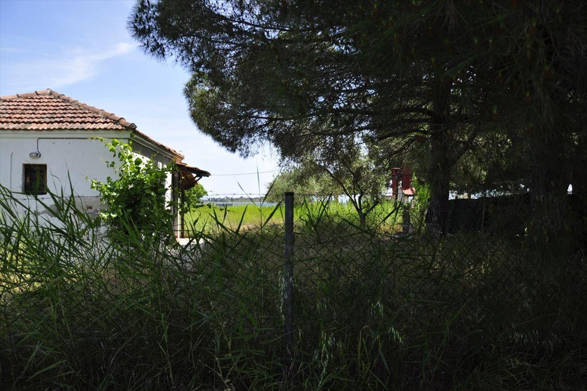 Коттедж Халкидики-Ситония, Греция, 2100 сот. - фото 1