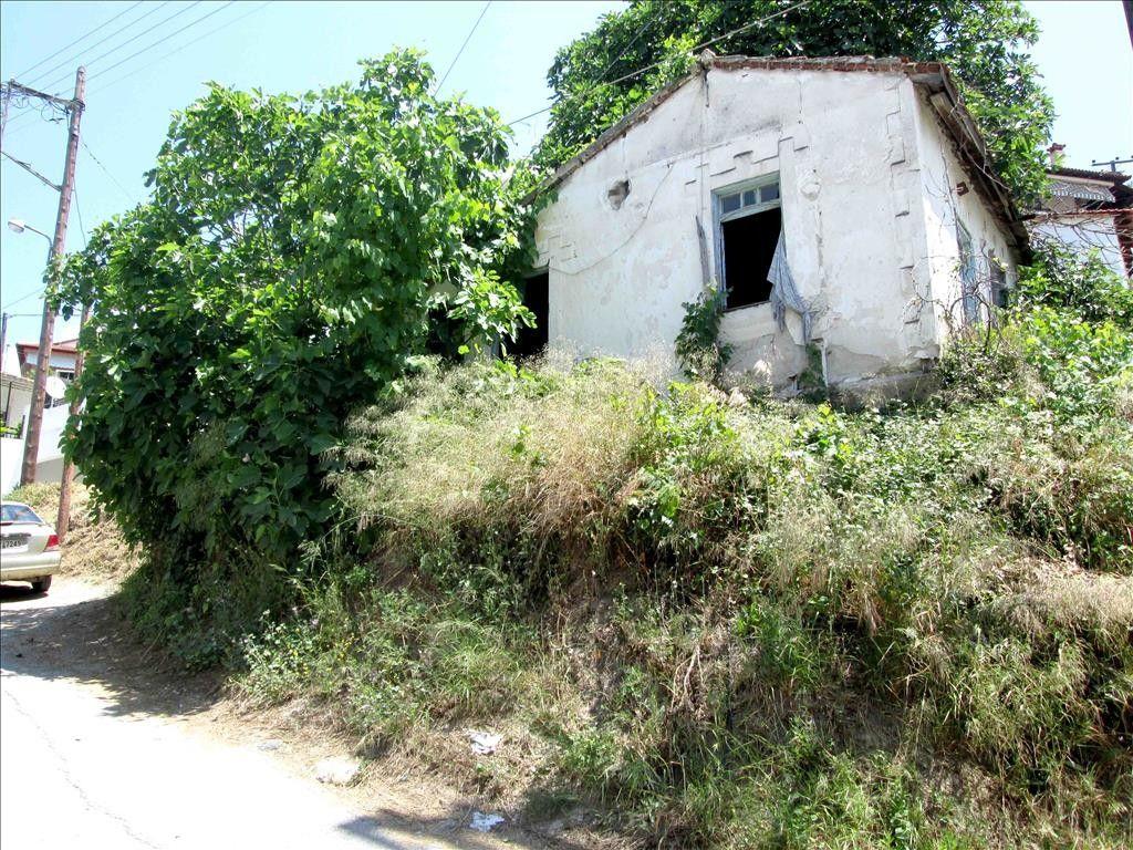 Земля Халкидики-Ситония, Греция, 300 сот. - фото 1