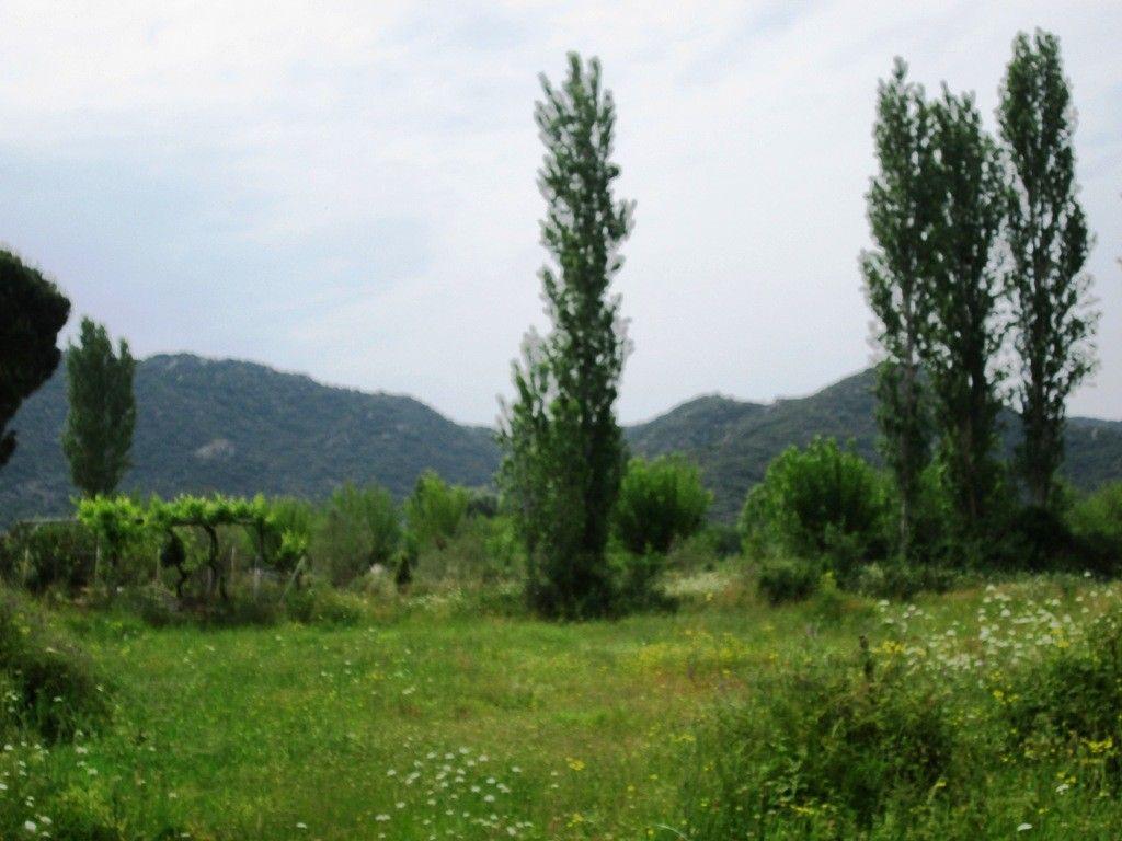 Земля Халкидики-Ситония, Греция, 2200 сот. - фото 1