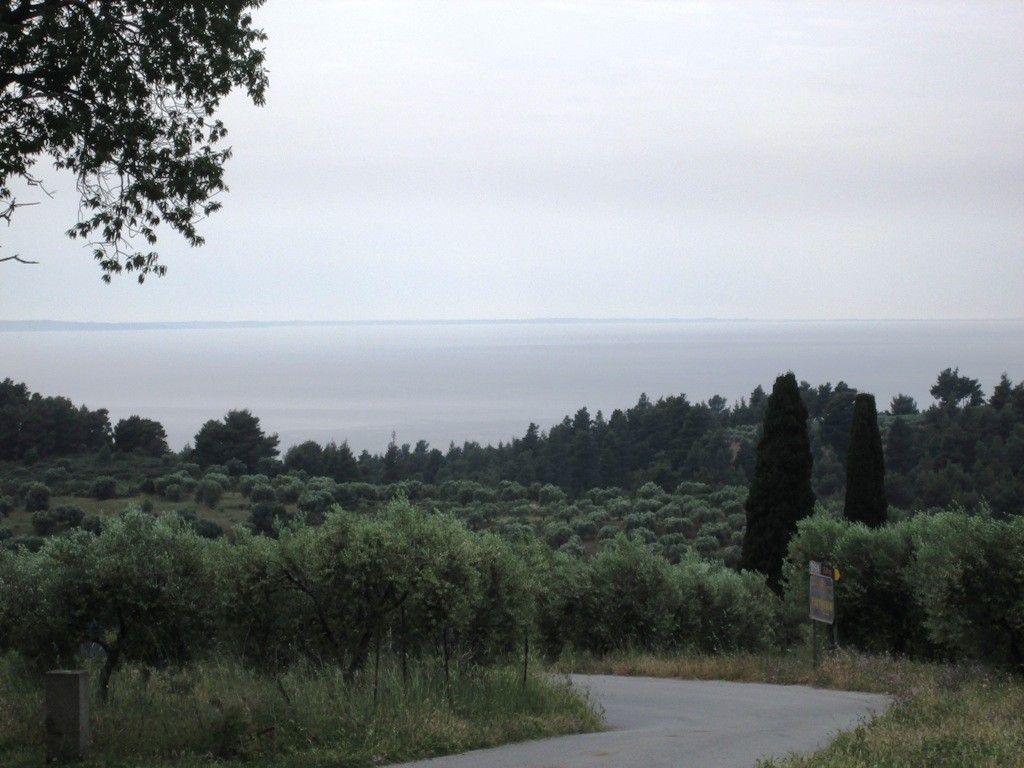 Земля Халкидики-Ситония, Греция, 480 сот. - фото 1