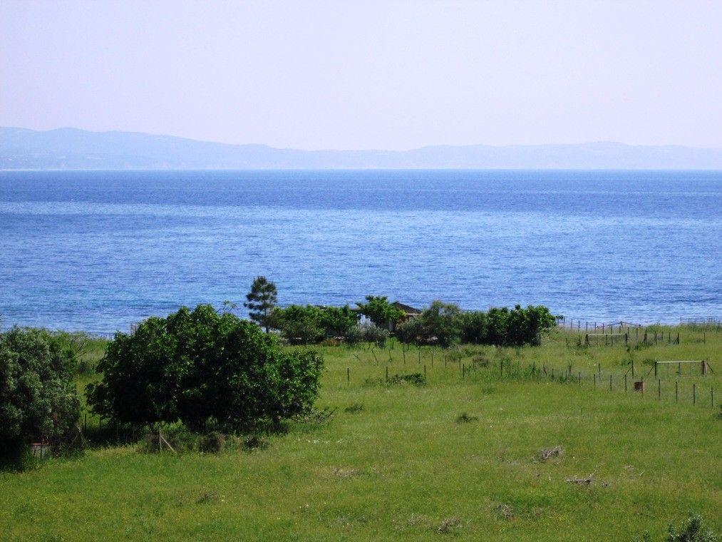 Земля Халкидики-Ситония, Греция, 4027 сот. - фото 1