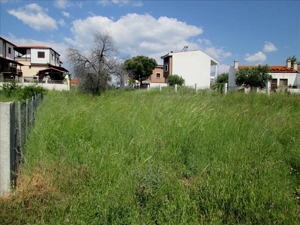 Земля Халкидики-Ситония, Греция, 789 сот. - фото 1
