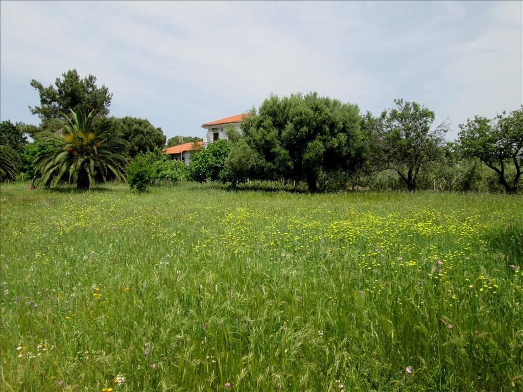 Коттедж Халкидики-Ситония, Греция, 4300 сот. - фото 1