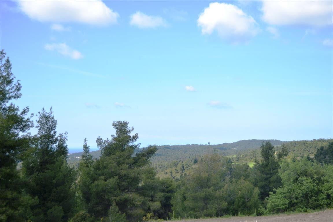 Земля Халкидики-Кассандра, Греция, 5500 сот. - фото 1