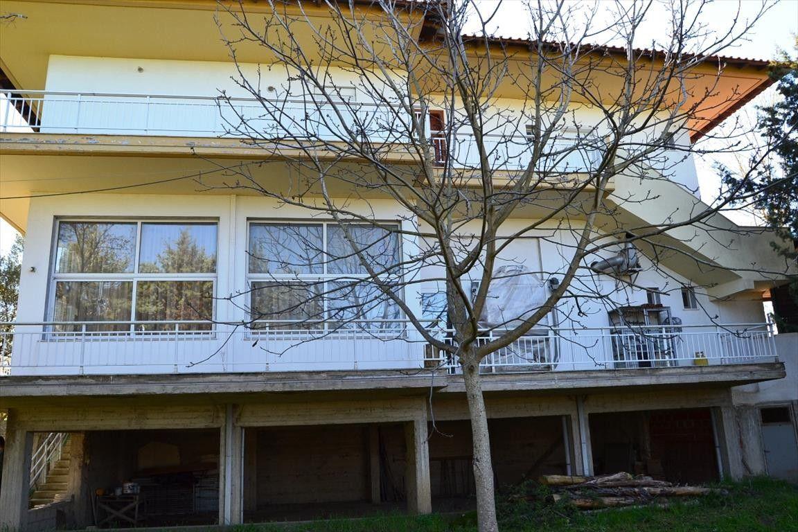 Коммерческая недвижимость Халкидики-Кассандра, Греция, 240 м2 - фото 1