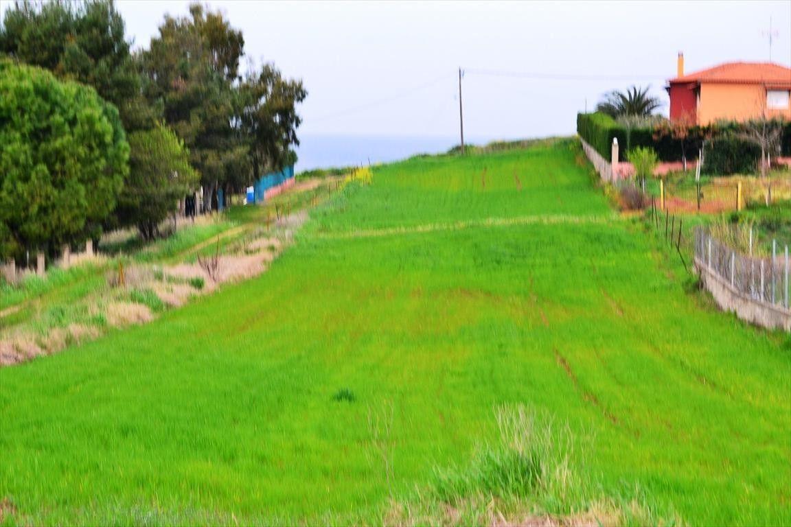 Земля Халкидики-Кассандра, Греция, 3050 сот. - фото 1