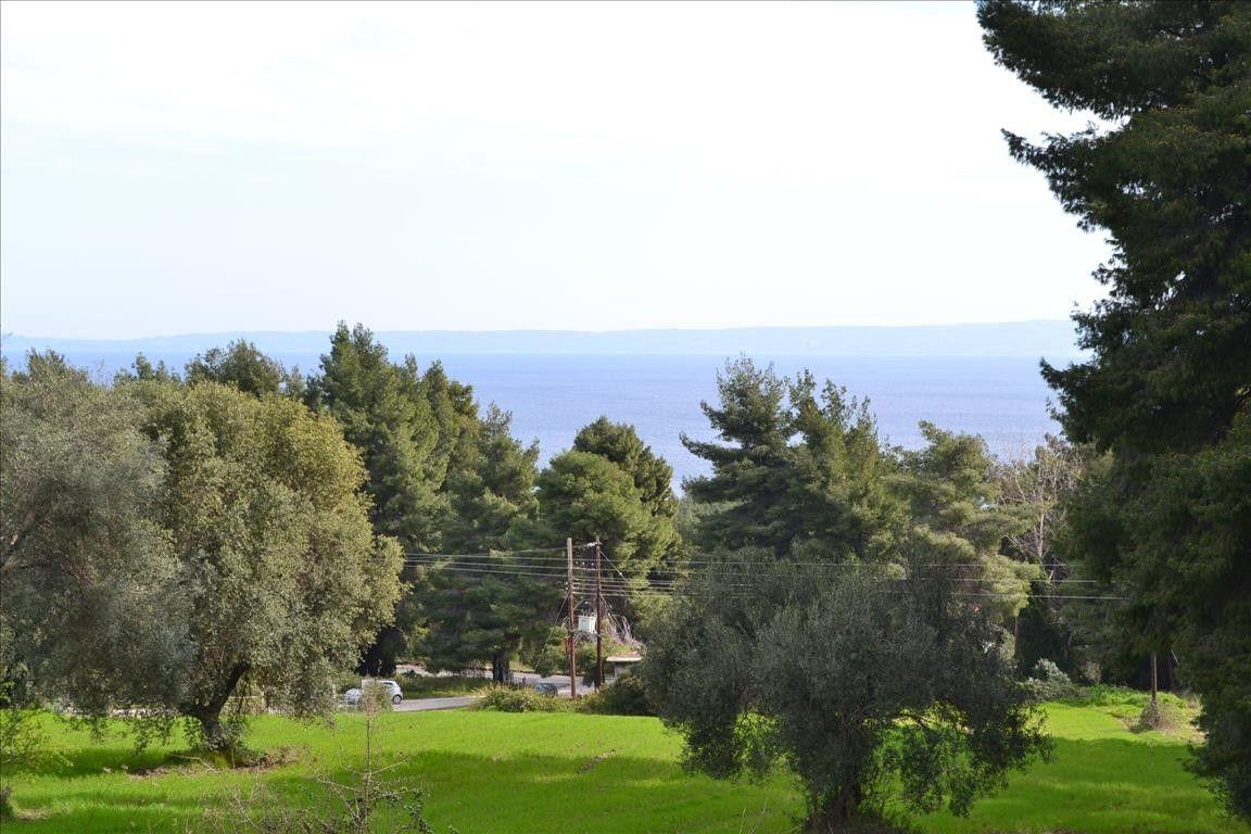 Земля Халкидики-Кассандра, Греция, 13000 сот. - фото 1