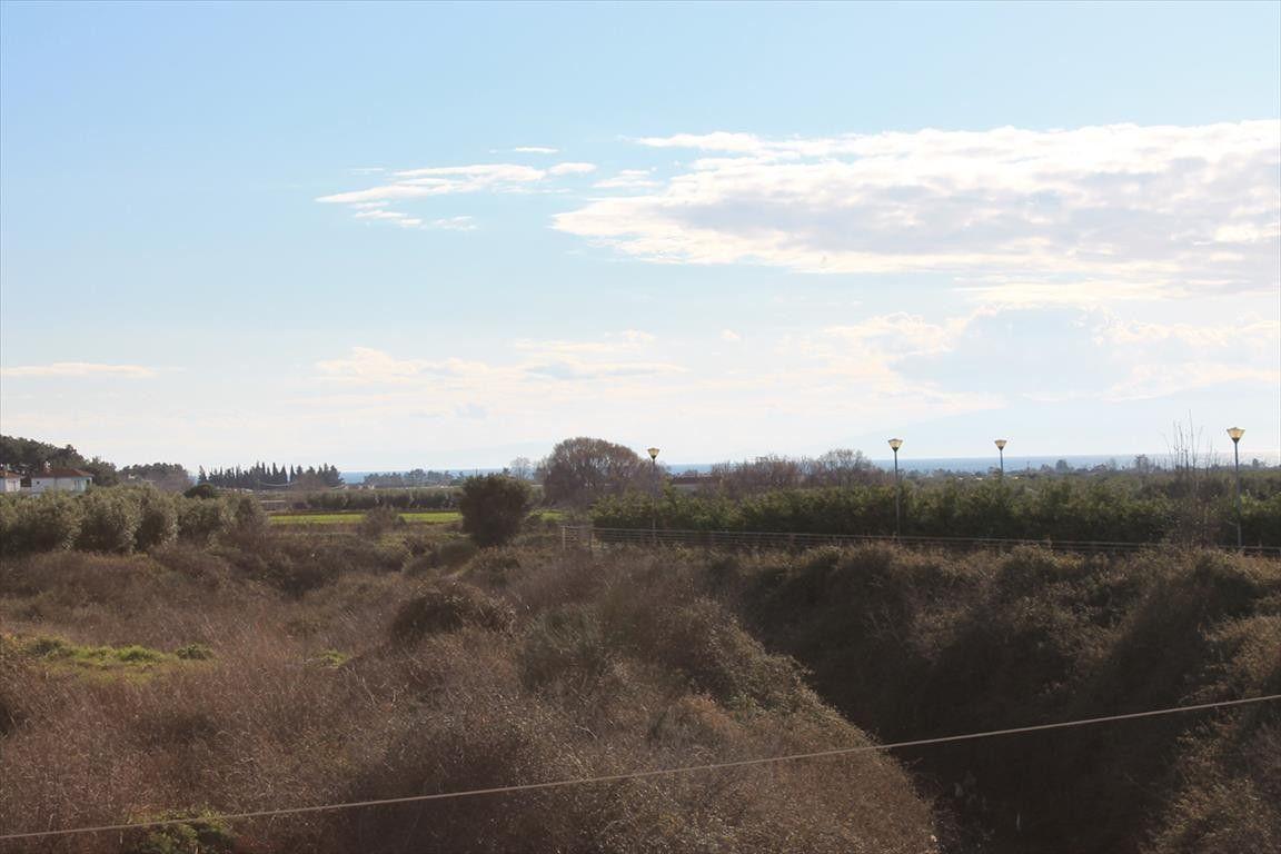 Земля Халкидики-Другое, Греция, 5500 сот. - фото 1
