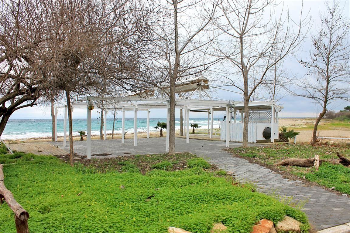 Коммерческая недвижимость Халкидики-Кассандра, Греция, 267 м2 - фото 1