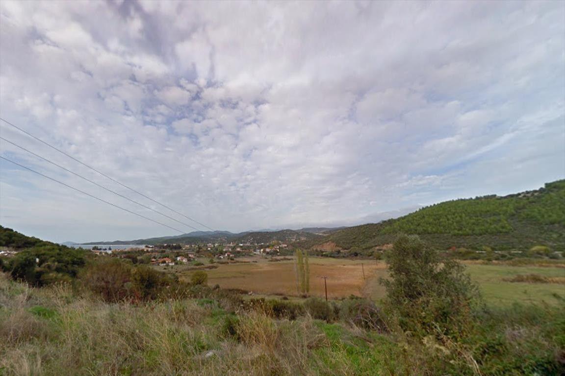 Земля Халкидики-Ситония, Греция, 1850 сот. - фото 1