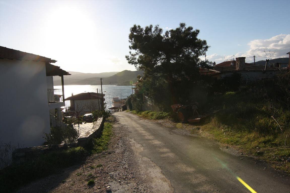 Земля Халкидики-Афон, Греция, 500 сот. - фото 1